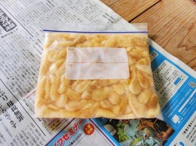 【季節限定アコヤ(真珠)貝の貝柱500g冷凍】 愛媛宇和島産