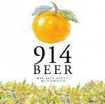 敦賀東浦みかん914ビール ギフトセット 【914ビール3本&914ビールKURO3本&ギフトBOX入り】