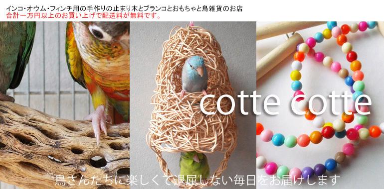cotte cotte