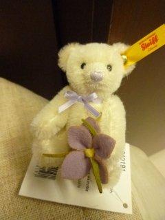 Mini Teddy bear Krokus