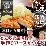 九州産 鹿児島県産 無添加 お惣菜  はいからポークの肩ロース 手作りとんかつ 4枚