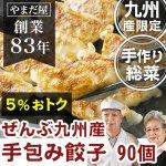 無添加 お惣菜  (鹿児島県産 はいからポーク 九州産野菜) 手包み ギョウザ 90個