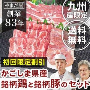 【初回限定 送料無料】 九州産 鹿児島県...