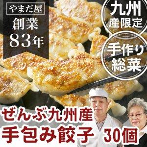 【鹿児島ブランド豚】【はいからポーク】【九州産野菜】手作りひとくち餃子30個入り