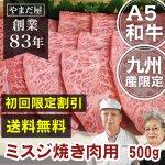 【初回限定】【送料無料】九州産 黒毛和牛A5ランク 極上カルビ(幻の肉ミスジ)500g