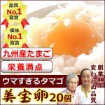 九州 福岡産 野上さんの卵20個入り