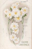 アンティーク ポストカード ホワイトフラワー Easter Greetings