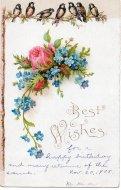 アンティーク ポストカード 忘れな草と薔薇 木にとまった鳥達 Best Wishes