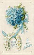 アンティーク ポストカード ブルーのスミレ マーガレット Birthday