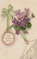 アンティーク ポストカード スミレ リボン Best Birthday Wishes