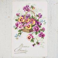 アンティーク ポストカード フランス パンジー Bonne Annee