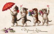 アンティーク ポストカード 4匹の猫たち Bonne Fete