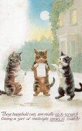 アンティーク ポストカード  真夜中に集まる猫たち