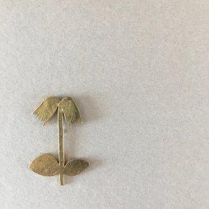 mauve 高山植物ブローチ イワカガミ