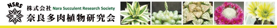 (株) 奈良多肉植物研究会  -多肉植物・サボテン・種子・園芸資材の販売-