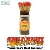 WILD BERRY「Incense Sticks/Champa Flower」【チャンパフラワー】ワイルドベリー インセンス お香