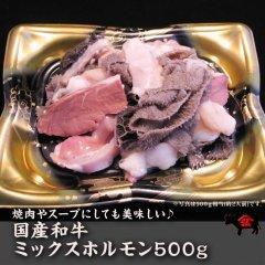 【冷凍発送】国産和牛ミックスホルモン500g