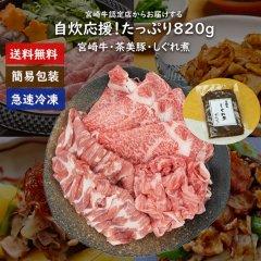 [送料無料]宮崎牛&茶美豚820gセット