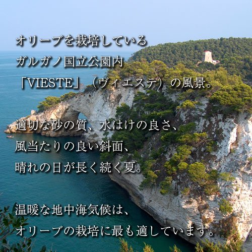 エキストラヴァージン オリーブオイル ディサンティ 500mlの写真1