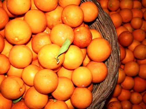エキストラヴァージン【オレンジ】オリーブオイル ディサンティ 500mlの写真1