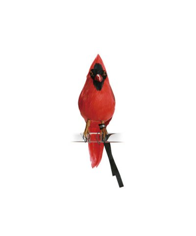 PUEBCO / ARTIFICIAL BIRDS Cardinal