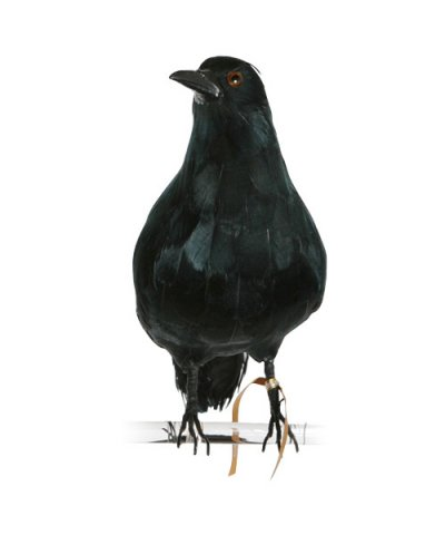 PUEBCO / ARTIFICIAL BIRDS Crow - L