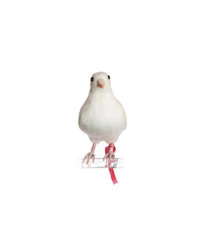 PUEBCO / ARTIFICIAL BIRDS Dove - S