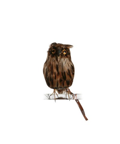 PUEBCO / ARTIFICIAL BIRDS Owl - Brown - S