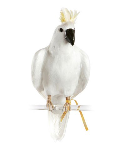 PUEBCO / ARTIFICIAL BIRDS Parrot - L