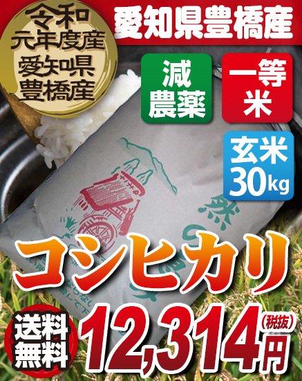 送料無料!【減農薬】29年度・新米!愛知県豊橋産 コシヒカリ 玄米(30kg)