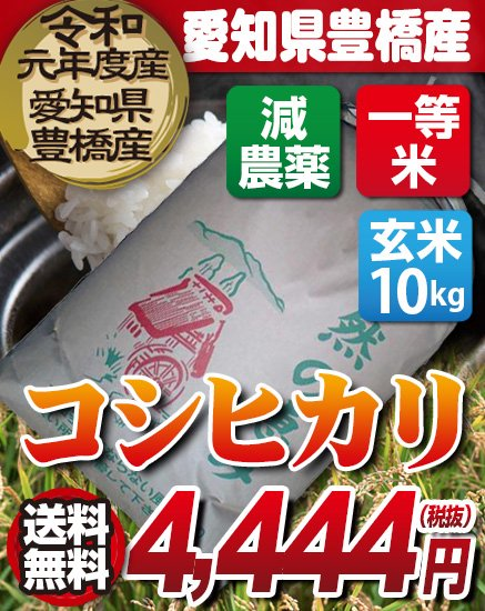 送料無料!【減農薬】29年度・新米!愛知県豊橋産 コシヒカリ 玄米(10kg)