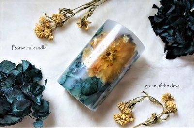 Turkish bellflower-Blue-