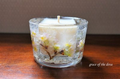 Sakura Botanical candle -soy circle-