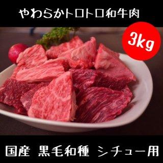 和牛肉 シチュー用 3kg セット カット済み 和牛 黒毛和種 黒毛和牛 真空パック