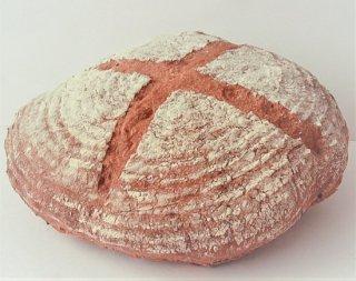 古代(スペルト小麦パン)