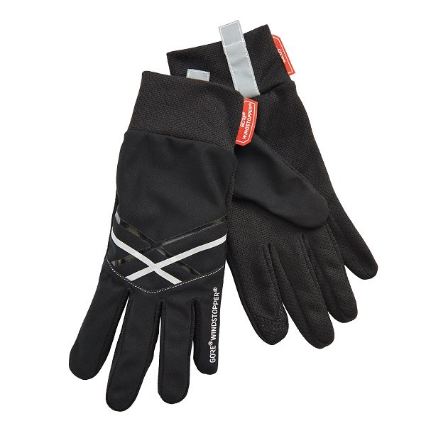 Windy Dri Lite Glove2