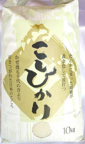 28年産 石川県産こしひかり白米10Kg