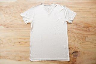 絹のVネック半袖シャツ(男性用)