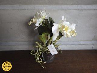エミリオロバ EMILIO ROBBA / 造花 クチュールフラワー カトレア ♪