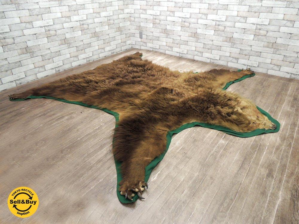 クマ 熊 敷物 ラグマット 剥製 カーペット 毛皮 261 x 248cm 爪付き ●