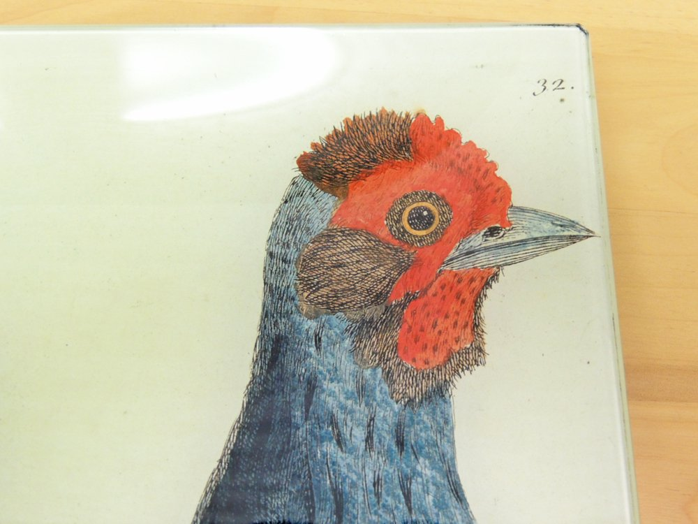 ジョン・デリアン JOHN DERIAN デコパージュ プレート バード birds 飾り皿 ガラス ●