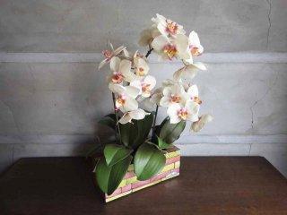 エミリオロバ EMILIO ROBBA 造花 クチュールフラワー 胡蝶蘭 コチョウラン 大サイズ ♪