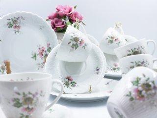 リモージュ Limoges ジョルジュ ボワイエ エグラン Georges Boyer porcelaine dure C&S & プレート 18点セット フランス ◎