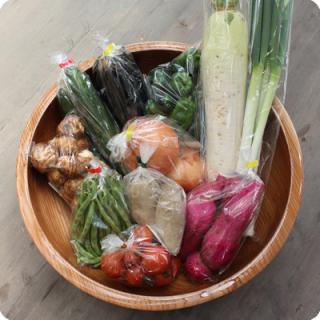 【道の駅あさじ】★朝地から朝採れ産直★ 季節の旬野菜セット