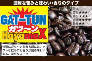 GAT-TUNブレンド HayamaX / ×300g(300g×1)