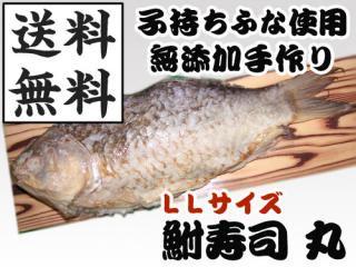 近江米でじっくり熟成発酵させた琵琶湖産の天然子持ちげんごろう鮒寿司 丸LL