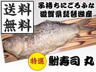 琵琶湖産の天然子持ちニゴロブナで丁寧に手作りした鮒寿司(サイズ各種あり)