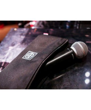 MICROPHONES CASE