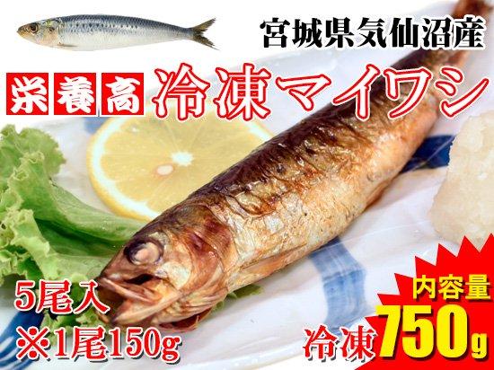 【ヘルシーさかな!】気仙沼産冷凍マイワシ ※5尾/750g