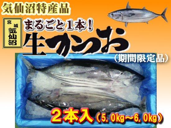 【期間限定】気仙沼産生かつお 2本入※5.0kg〜6.0kg